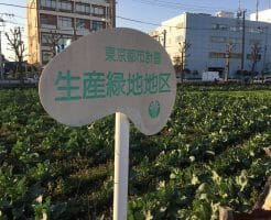 生産緑地イメージ