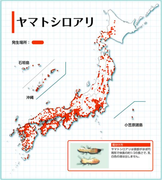 ヤマトシロアリ分布